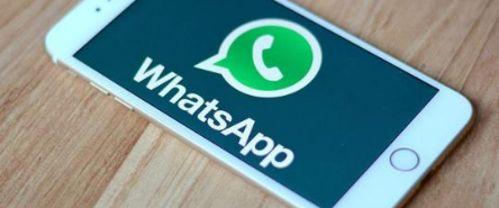 Honorarios de Perito de WhatsApp