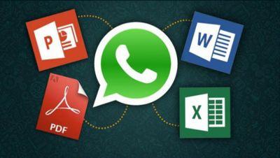 Pruebas en los archivos de WhatsApp